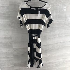 Loft brand new off white and black striped dress